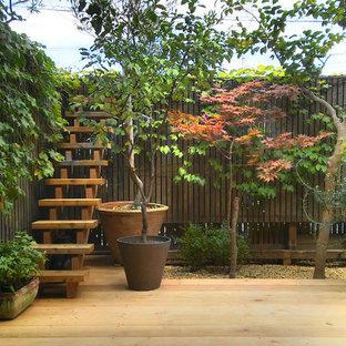 Immagine di una terrazza etnica di medie dimensioni e dietro casa con un giardino in vaso e nessuna copertura