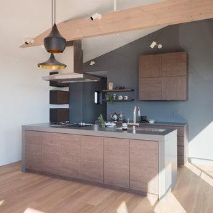 東京都下のミッドセンチュリースタイルのおしゃれなキッチン (シングルシンク、フラットパネル扉のキャビネット、中間色木目調キャビネット、ステンレスカウンター、塗装フローリング、ベージュの床) の写真