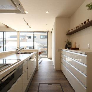 他の地域のモダンスタイルのおしゃれなキッチン (シングルシンク、塗装フローリング、グレーの床) の写真
