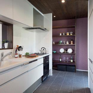他の地域のモダンスタイルのおしゃれなII型キッチン (一体型シンク、フラットパネル扉のキャビネット、白いキャビネット、白いキッチンパネル、グレーの床) の写真