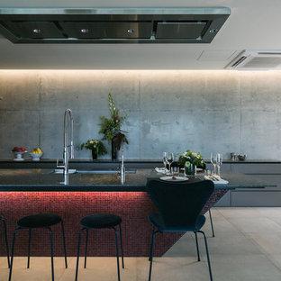 東京23区の大きいモダンスタイルのおしゃれなキッチン (アンダーカウンターシンク、インセット扉のキャビネット、グレーのキャビネット、クオーツストーンカウンター、シルバーの調理設備の、グレーの床、黒いキッチンカウンター) の写真