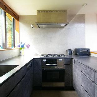 他の地域のモダンスタイルのおしゃれなキッチン (アンダーカウンターシンク、グレーのキャビネット、グレーのキッチンパネル、磁器タイルのキッチンパネル、シルバーの調理設備の、リノリウムの床、アイランドなし、茶色い床、グレーのキッチンカウンター) の写真