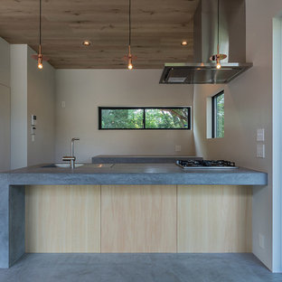 Midcentury galley kitchen in Yokohama with concrete benchtops, stainless steel appliances, concrete floors and a peninsula.