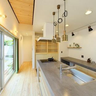 他の地域の北欧スタイルのおしゃれなキッチン (淡色無垢フローリング) の写真