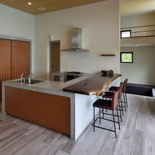 他の地域のコンテンポラリースタイルのおしゃれなキッチン (シングルシンク、コンクリートカウンター、塗装フローリング、グレーの床) の写真