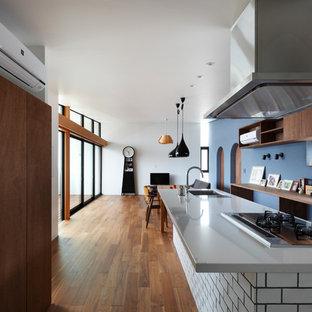 大阪のコンテンポラリースタイルのおしゃれなキッチン (シングルシンク、ヴィンテージ仕上げキャビネット、ステンレスカウンター、無垢フローリング、茶色い床) の写真