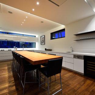 札幌の大きいコンテンポラリースタイルのおしゃれなキッチン (アンダーカウンターシンク、フラットパネル扉のキャビネット、白いキャビネット、メタリックのキッチンパネル、黒い調理設備、無垢フローリング、アイランドなし) の写真
