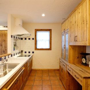 他の地域のカントリー風おしゃれなペニンシュラキッチン (シングルシンク、落し込みパネル扉のキャビネット、ヴィンテージ仕上げキャビネット、マルチカラーのキッチンパネル、テラコッタタイルの床、茶色い床) の写真
