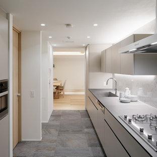東京23区の大きいモダンスタイルのおしゃれなキッチン (シングルシンク、フラットパネル扉のキャビネット、白いキャビネット、グレーの床) の写真