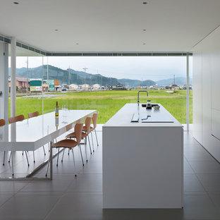 東京都下のI型モダンスタイルのLDKの画像 (アンダーカウンターシンク、フラットパネル扉のキャビネット、白いキャビネット、シルバーの調理設備、アイランド1つ、グレーの床)