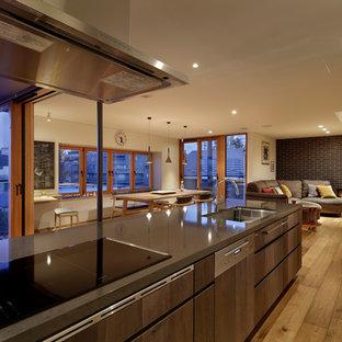 東京23区の大きいアジアンスタイルのおしゃれなキッチン (アンダーカウンターシンク、フラットパネル扉のキャビネット、ヴィンテージ仕上げキャビネット、クオーツストーンカウンター、黒い調理設備、無垢フローリング、茶色い床、黒いキッチンカウンター) の写真