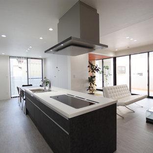 他の地域のモダンスタイルのおしゃれなキッチン (クッションフロア、グレーの床、シングルシンク、フラットパネル扉のキャビネット、黒いキャビネット、白いキッチンカウンター) の写真