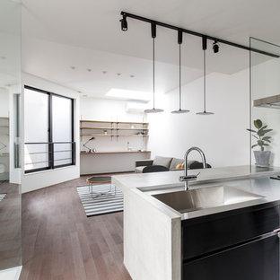 他の地域のモダンスタイルのおしゃれなキッチン (塗装フローリング、茶色い床、シングルシンク、フラットパネル扉のキャビネット、ステンレスキャビネット、ステンレスカウンター) の写真