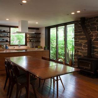 他の地域のミッドセンチュリースタイルのおしゃれなLDK (白い壁、無垢フローリング、薪ストーブ、石材の暖炉まわり、茶色い床) の写真