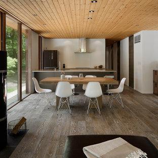 他の地域のミッドセンチュリースタイルのおしゃれなLDK (白い壁、塗装フローリング、茶色い床、薪ストーブ、石材の暖炉まわり) の写真