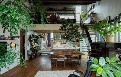 建築家に聞く、植物を取り入れた住まいづくり