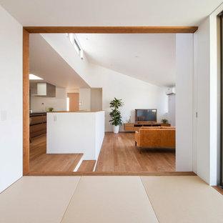 Offenes Modernes Wohnzimmer mit weißer Wandfarbe, Sperrholzboden, freistehendem TV und braunem Boden in Sonstige