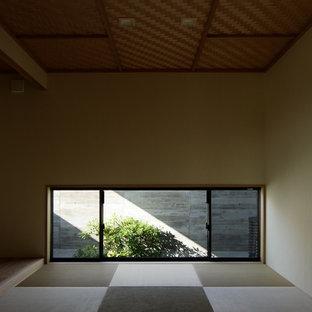 Exemple d'une salle de séjour asiatique avec un mur vert, aucune cheminée, aucun téléviseur et un sol de tatami.