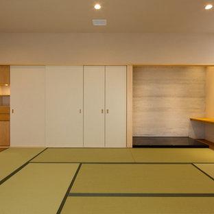 Esempio di un soggiorno etnico con pareti bianche, parquet scuro e pavimento verde