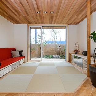 Ispirazione per un soggiorno etnico con pareti bianche, pavimento in tatami e pavimento verde
