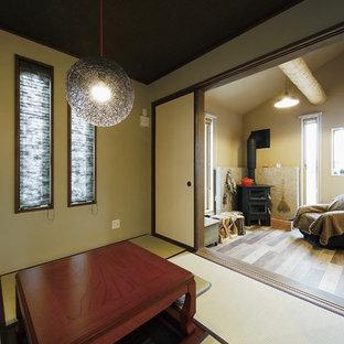 他の地域の小さいアジアンスタイルのおしゃれなファミリールーム (緑の壁、畳、薪ストーブ、石材の暖炉まわり、緑の床) の写真