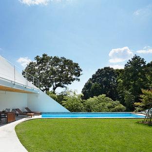 東京23区の長方形コンテンポラリースタイルのおしゃれな競泳用プールの写真