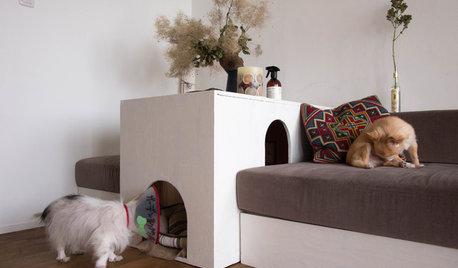 今週の部屋:オリジナルソファとワンコの居場所のある、眺めのいいLDK