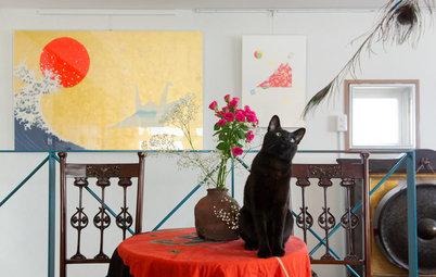 My Houzz:日本古典文学の翻訳家マクミランさんが、3匹の愛猫と暮らす家