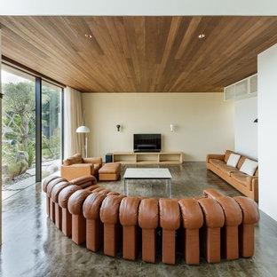 他の地域のモダンスタイルのおしゃれなリビング (白い壁、据え置き型テレビ、コンクリートの床、グレーの床) の写真