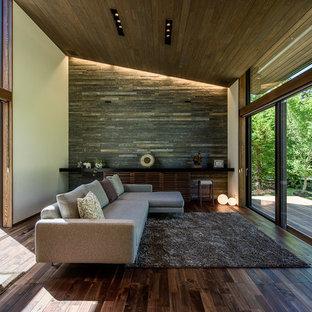 他の地域のコンテンポラリースタイルのおしゃれなLDK (マルチカラーの壁、濃色無垢フローリング、標準型暖炉、石材の暖炉まわり、茶色い床) の写真