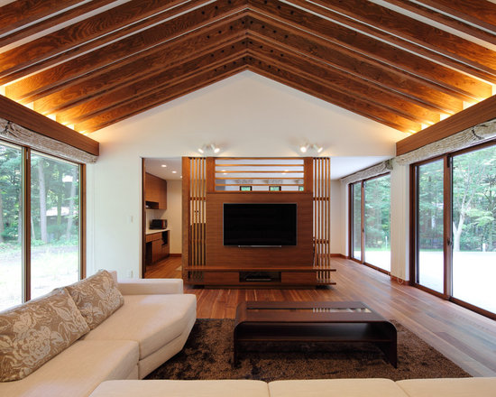 living room design ideas, remodels & photos with plywood floors