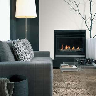 Inspiration for a contemporary living room in Other with white walls, dark hardwood flooring and a standard fireplace.