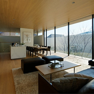 Inspiration For A Modern Open Concept Plywood Floor And Beige Floor Living  Room Remodel In Tokyo