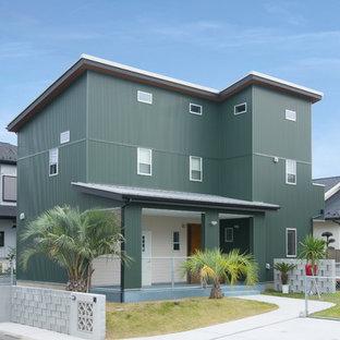トラディショナルスタイルのおしゃれな家の外観 (緑の外壁、片流れ屋根、戸建) の写真