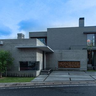 他の地域の中くらいのモダンスタイルのおしゃれな家の外観 (コンクリートサイディング、グレーの外壁) の写真