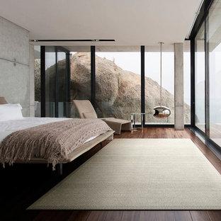 東京23区のモダンスタイルのおしゃれな寝室 (グレーの壁、濃色無垢フローリング、吊り下げ式暖炉、茶色い床)