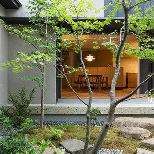 東京23区の和風のおしゃれな中庭の写真