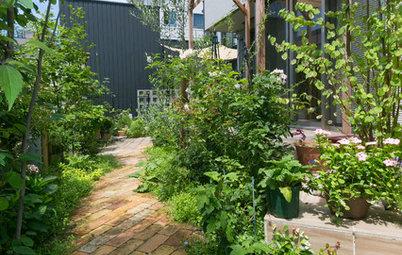 夏の庭・ガーデン100選!