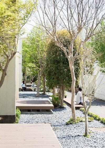 Contemporáneo Jardín by 成瀬・猪熊建築設計事務所 一級建築士事務所
