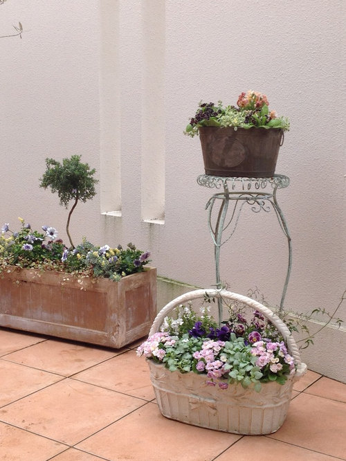 Shabby chic style front garden design ideas pictures for Front garden inspiration