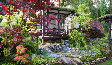 Get the Look: Japanese-Inspired Garden Style