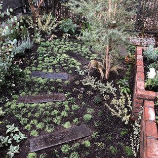 Immagine di un piccolo giardino minimalista esposto in pieno sole dietro casa in inverno