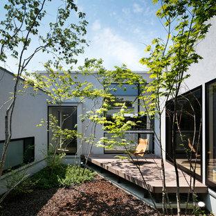 名古屋のコンテンポラリースタイルのおしゃれな庭 (半日向) の写真