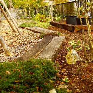 Immagine di un grande giardino etnico esposto in pieno sole nel cortile laterale in estate con un ingresso o sentiero e pacciame