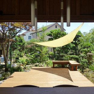東京都下の和風のおしゃれな庭 (日向) の写真