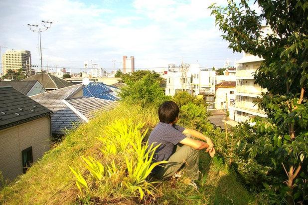 トロピカル 庭 by 株式会社イケガミ