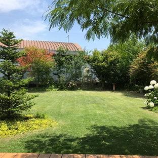 他の地域, のカントリー風おしゃれな庭・ランドスケープ (日向) の写真