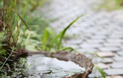 涼しさ満点。水を庭に取り入れる