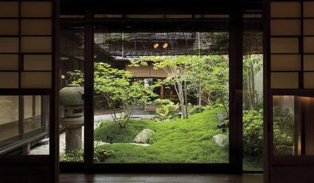 60 Ingenious Urban Gardens Inside Homes