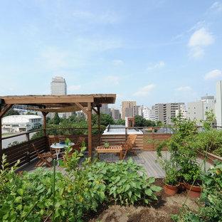 東京23区の夏のトランジショナルスタイルの屋上の画像 (整形式庭園、デッキ材舗装、日向)